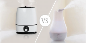 humidifier and diffuser